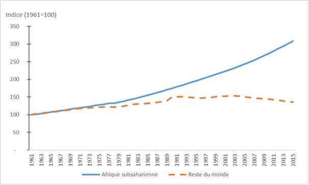 Le coton en Afrique de l'Ouest. Un enjeu économique et social - OCDE